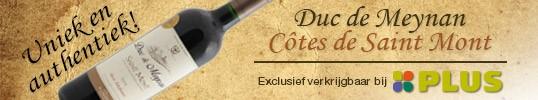 Banner Duc_de_Meynan